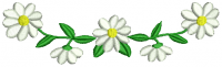 Oxeye_daisy__4b430c6f93ca1.png